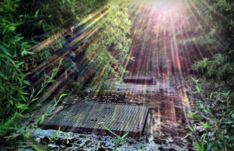Secret sunbeams